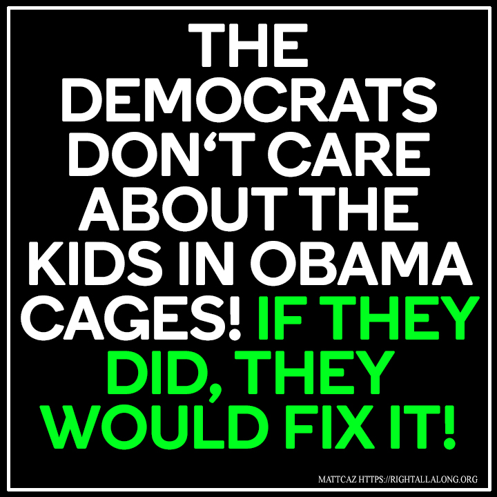 democrats dont care about the kids picture